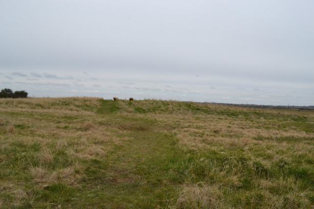 A replica red hill created at RSPB Bower's Marsh nature reserve, Canvey Island.