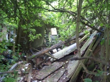 Possibly 'The Hut' remains