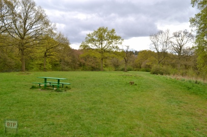 Thundersley Glen (4)